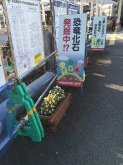 押入れ福井駅工事化石発掘