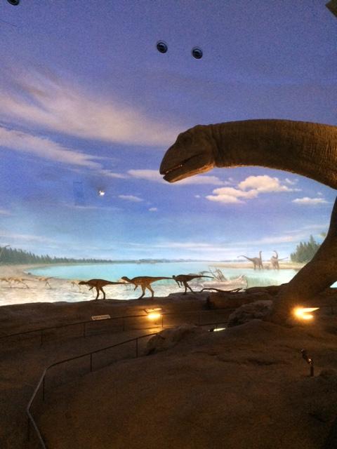 押入れ恐竜2